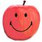 【ガルロワ アウェイキングニュース!】第1回「ファンタジスタドール ガールズロワイヤル」事前登録が始まりました!